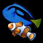 کسب درآمد از «پرورش ماهیان زینتی»